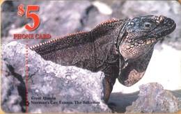 Bahamas - BS-BAT-0025A, Great Iguana / Norman's Cay, Exuma, The Bahamas, Reptiles, 5 $, Used - Bahamas