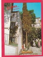 Modern Post Card Of Lisboa Lisbon,Portugal,L55. - Lisboa