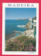 Modern Post Card Of Funchal,Madeira,Portugal,L55. - Madeira