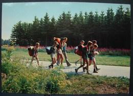 CP. 2685. Troupe De Scouts Sur La Route - Scoutisme