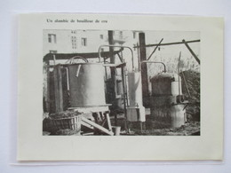 (1959) MAUBEC  - Coopérative Du Calavon - L'Alambic De La Distillerie -  Coupure De Presse Originale (encart Photo) - Documents Historiques