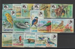 Lesotho 1981 Oiseaux Série 442-55 14 Val ** MNH - Lesotho (1966-...)