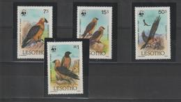 Lesotho 1986 Oiseaux Série 663-66 4 Val ** MNH - Lesotho (1966-...)
