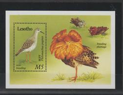 Lesotho 1989 Oiseaux BF 70 ** MNH - Lesotho (1966-...)