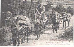 AD ANDORRE - Labouche 1058 - Muletier - Le Courrier De La Seo De Urgelle à Andorra La Viella - Animée - Belle - Andorra
