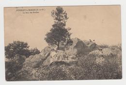 BO398 - PUISELET LE MARAIS - Le Bois Des Roches - France