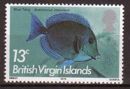 British Virgin Islands 1975 Queen Elizabeth Single 13c Stamp From The 1975 Definitive Fish Set. - British Virgin Islands
