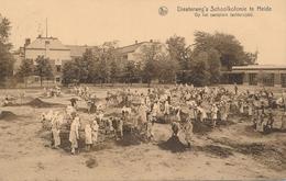 CPA - Belgique - Diesterweg's Schoolkolonie Te Heide - Kalmthout