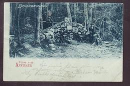 D3-79 GRUSS VOM ANNINGER - Autres