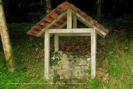 Loguivy-Plougras (22)- Fontaine De La Forêt De Beffou (Edition à Tirage Limité) - France