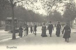 +++ CPA - BRUSSEL - BRUXELLES - Avenue Louise - Tram - Nels Série 1 N° 370    // - Avenues, Boulevards
