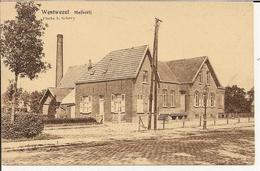 Westwezel (Wuustwezel)  Melkerij - Wuustwezel