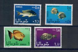 SOMALIA 1966 - FAUNA PESCI  - MNH ** - Somalia (1960-...)
