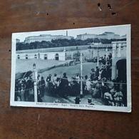 Cartolina Postale 1930, Livorno Scoglio Della Regina - Livorno