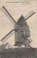Celles - Molembaix  ,moulin Butor ( Windmolen , Molen , Moulin à Vent ) - Celles