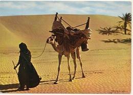 Postcard Net - Mauritania - Camel Driver - No. 4324. Printed In France. - Mauritania