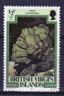 British Virgin Islands 1979 Queen Elizabeth Single Half Cent Stamp Celebrating Marine Life. - British Virgin Islands
