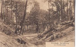 Holle Weg (zeldzame Kaart Achterzijde) - Scherpenheuvel-Zichem