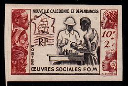 NOUVELLE CALEDONIE - N°278 - OEUVRE SOCIALE - F.O.M. - Neukaledonien