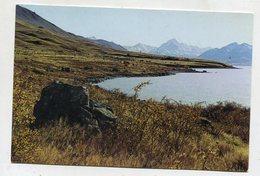 NEW ZEALAND - AK 352198 Mackenzie Country - Lake Pukaki - Nouvelle-Zélande
