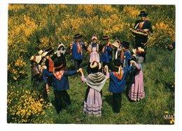 19 - Groupe Folklorique D'USSEL - Les Compagnons De La Joie Au Village (Vielle) - Musique