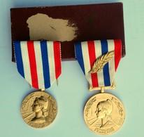 2 Médailles D'honneur En Bronze Doré (PALME) - CHEMINS DE FER Par GEORGES GIRAUD 1976 & 1981 -loco TGV,VAPEUR,ELECTRIQUE - France