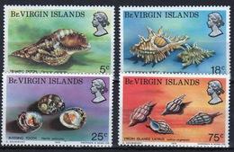 British Virgin Islands 1974 Queen Elizabeth Set Of Stamps Celebrating Sea Shells. - British Virgin Islands