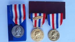 3 Médailles D'honneur Bronze Doré (PALME) Argent - CHEMINS DE FER Par G. GIRAUD 1967-77-81 -loco TGV,VAPEUR,ELECTRIQUE - France