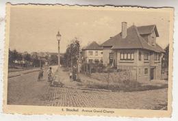 Stockel - Avenue Grand-Champs - Animé - Edit. Vandermaelen, Stockel N° 8 - St-Pieters-Woluwe - Woluwe-St-Pierre