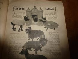 1908 NOS LOISIRS : Les Chiens Habillés; Les Têtes Coupées Du Chérif Messaoud;Conception,la Chercheuse D'or;etc - Livres, BD, Revues