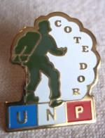 PINS PIN UNP Parachutistes 21 Cote D Or - Parachutting