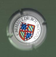 CAPSULE DE VIN MOUSSEUX ( CREMANT DE BOURGOGNE) - Sparkling Wine