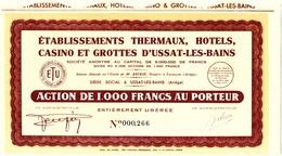 Ets THERMAUX, HOTELS, CASINO ET GROTTES D'USSAT-LES-BAINS ( Ariège ) - Casino