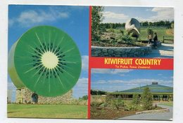 NEW ZEALAND - AK 352305 Te Puke - Kiwifruit Country - Nouvelle-Zélande