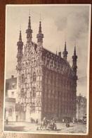 Lowen Rathaus - Leuven