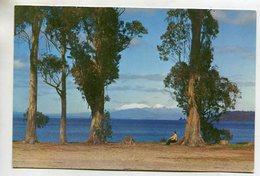 NEW ZEALAND - AK 352316 Lake Taupo - Nouvelle-Zélande