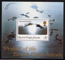 British Virgin Islands 1980 Queen Elizabeth Mini Sheet Celebrating Profiles Of The Virgin Islands. - British Virgin Islands