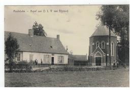 Meulebeke  -  Kapel Van OLV Van Bijstand - Meulebeke