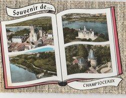 CHAMPTOCEAUX (49). Souvenir De ... Forme Livre, 4 Vues: Dont Vue Sur L'Eglise - Champtoceaux