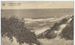 Bredene A/Zee - Bredene S/Mer - Les Dunes Et La Mer - Albert 6 - Edit H. De Cuyper - Bredene