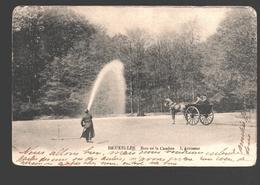 Brussel / Bruxelles - Bois De La Cambre - L'Arroseur - Dos Simple - 1903 - Forêts, Parcs, Jardins