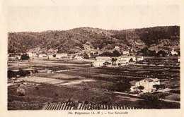 06 - PEGOMAS -VUE GENERALE - Autres Communes