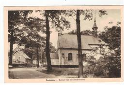 Lummen - Kapel Van De Beukeboom - Lummen