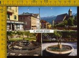 Trento Cavalese - Trento