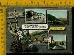 Trento Val Di Non Breguzzo - Trento