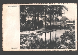 Brussel / Bruxelles - Parc Forestier Et Grands Palais Du Centenaire - Nels Bromurite - Forêts, Parcs, Jardins
