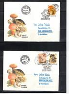 Hungary / Ungarn 1993 Mushrooms Interesting Cover FDC - Pilze