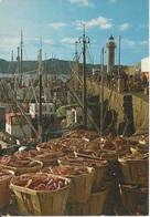 CPM Arrivée Des Coquilliers Postée De Etables Sur Mer Bateaux De Pêche Phare - Pêche