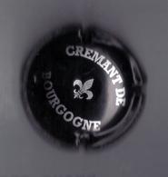 CAPSULE DE VIN MOUSSEUX ( CREMANT DE BOURGOGNE) - Mousseux