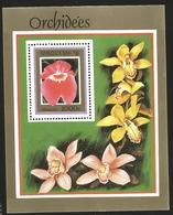 V) 1999 BENIN, FLOWERS, ORCHIDEES, MILTONIA, SOUVENIR SHEET, MNH - Benin - Dahomey (1960-...)